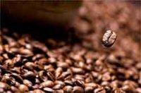 Лучшие торговые марки кофе