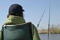 Как правильно ловить сазана