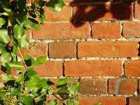 Как построить надежную кирпичную стену для своего участка