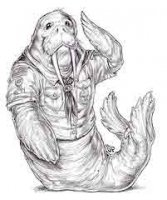 Как стать моржом и закалить свой организм